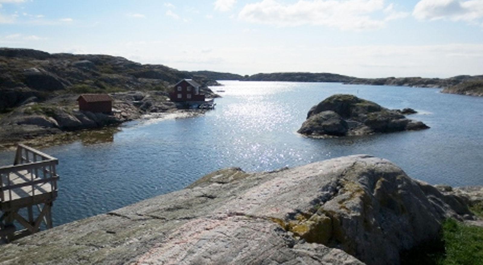 Välkommen till Västra Götaland Psoriasisforbundet alt
